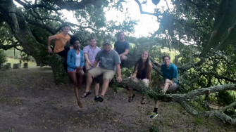 Geography students perched in a 200-year old Live Oak, as part of a field exploration of southern...