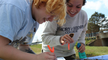 E&H students measure the number and diversity of stream dwellers to assess water quality.