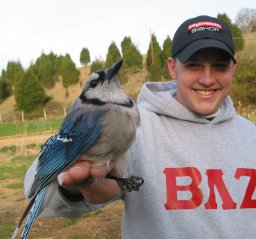 Adam Taylor holds a rather unhappy adult blue jay captured with the mist net in Wildlife Monitori...