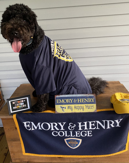 From Beverly Sheddan '84: Beamer is Emory Born and Emory Bred!