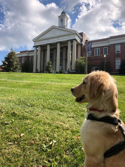 From Joy Edwards '18: Lady enjoys exploring and eating.