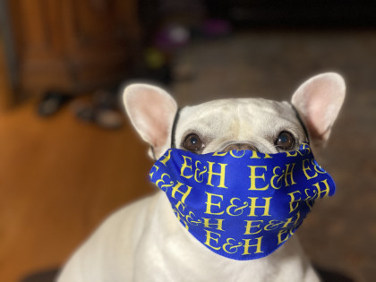 From Mark Lambert '95: Fiona loves her new E&H mask and she's being socially responsible...