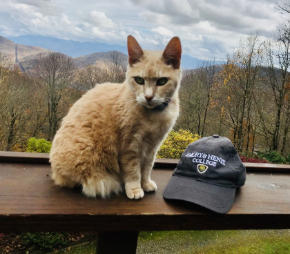 From Suehonor Hamby Connor '85: Pity Kitty says, Go, Waspers!