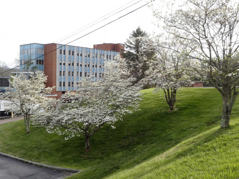 South view of School of Health Sciences in Marion, Va during the spring