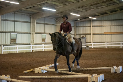 Mounted Session at Equine Camp