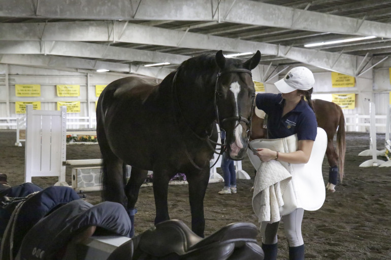 Tacking Up at the Equine Center