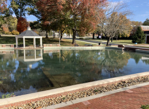 E&H Duck Pond