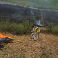 Two students manage a controlled burn for succession studies.